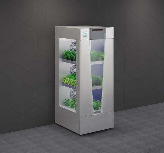 Smart In-Home Garden leafy greens